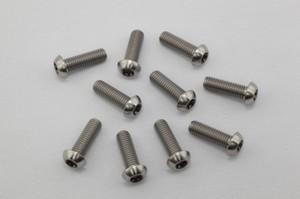 チタンボルト ドームヘッド M8×L25×P1.25(10本入り)